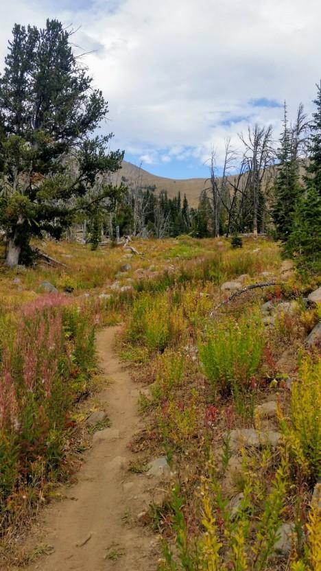Bridger Range Trail