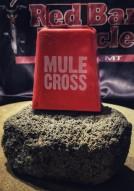 2011 Mule Cross