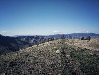Once I gained the ridge it was a fantastic open trail