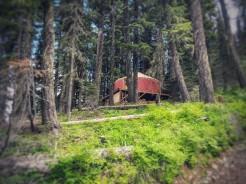 Wow ... a yurt ... cool.