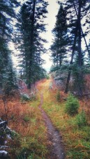 Meanwhile back on Mo's hike she is taking in the late colors