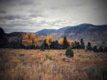 Fall near Yellowstone