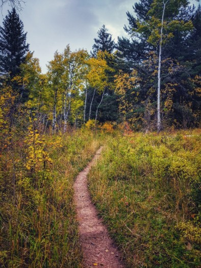 Wouldn't you write up this Trail?