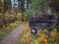The historical Wilderness sign is cute, and very