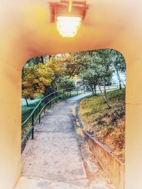 Walkways.