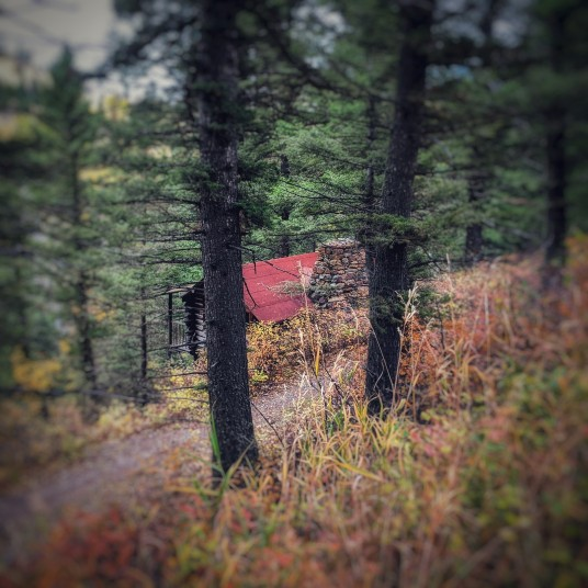 This tiny cabin on the hillside seems to be the perfect place for someone to write.
