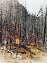 The wilderness boundary