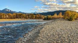 Gravel bars of the Yellowstone