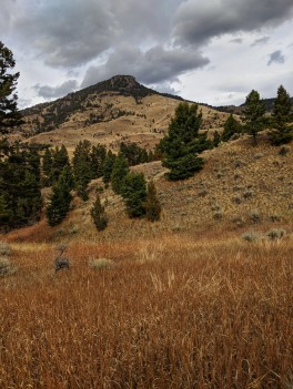 Brome and Butte