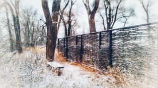 Gated wood