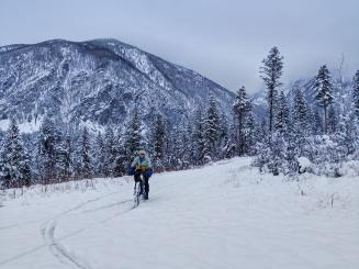 Snuggies returns from a treacherous little downhill run in the snow