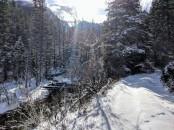 Back on Forest Service land