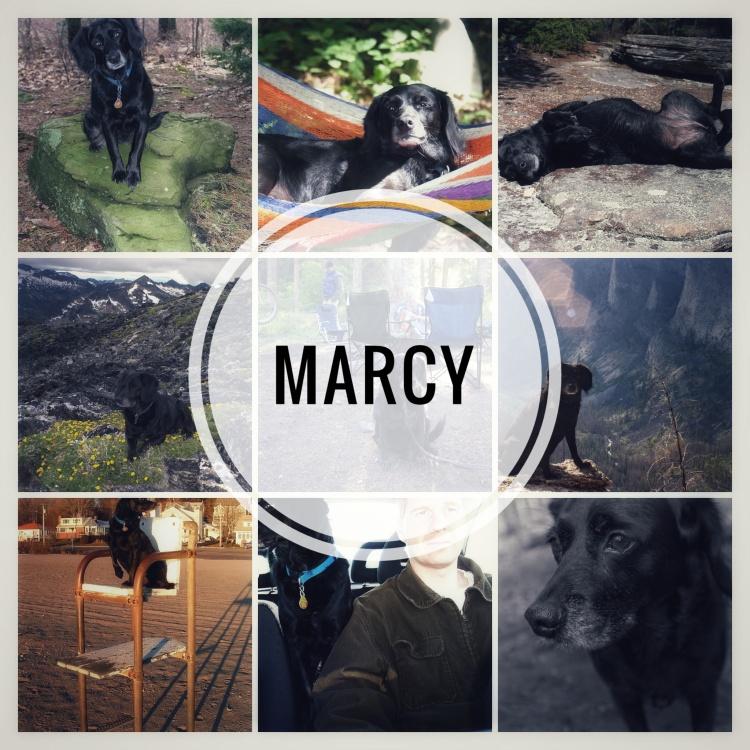Marcy Photos